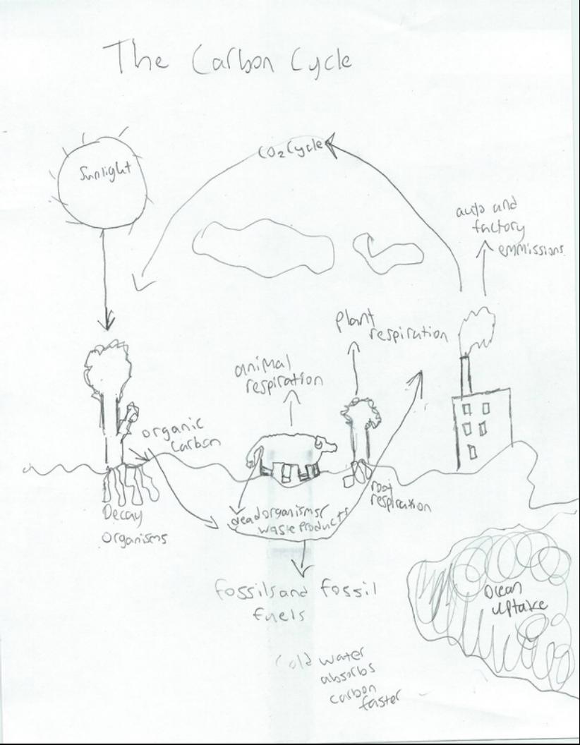 Unit 6: Marine Ecology - Allan Grant Marine Biology